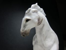 Roman chariot horse: Portrait by RixModels