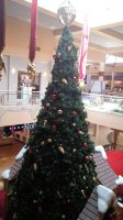 2014 Superstition Springs Santa Claus Station 11 by BigMac1212
