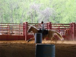 Pittsboro Horse Show 3-24-12 by unega-wahya