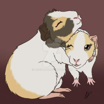 Guinea Pig Huggies by higesblue