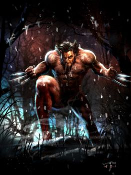 naked Wolvie by rudyao