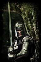 Man at Arms by PhilWinterbourne