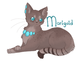 Marigold by Parrotfeathers