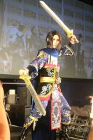 Dynasty Warriors MCM May '11 by KaniKaniza