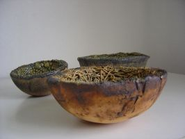 Bowls by Noases