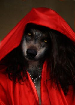 Red Riding Hood or The Big Bad Wolf? by OdysseusUT