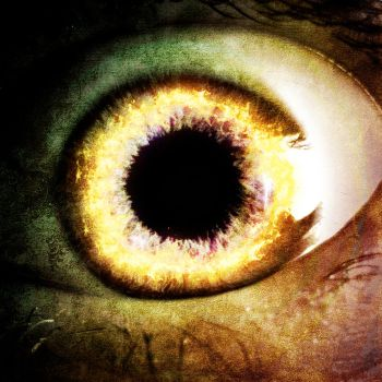 Take a Look into the One Eye by MD-Arts