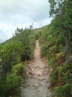 Hiking in South Africa 14 by ask-South-Africa
