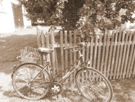 Bicycle by Singing-Wolf-12