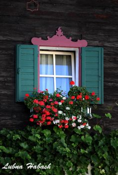 Window by lubnahabash