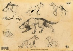 sketch Dogs by celaoxxx