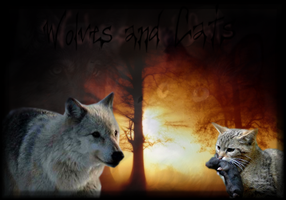 Wolves and Cats - header by SeraJeria
