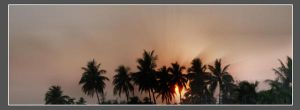 New dawn by drsouvikkumar
