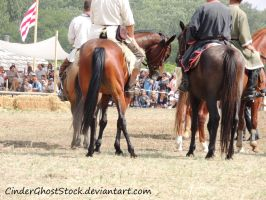 Hungarian Festival Stock 109 by CinderGhostStock