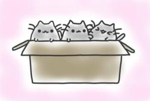 pusheen kittens by Nyatto