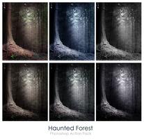 Haunted forest photoshop actions by lilydust