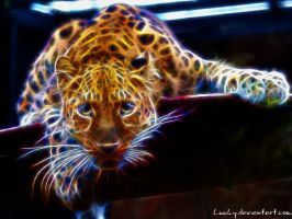 Fractal cheetah by Luuky