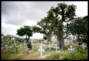 Graveyard in Fadiouth by x003