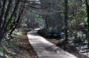 Rodwell Trail by Toast-Muncher