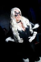 black cat by ViNitwinsViNi