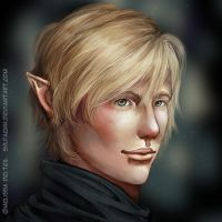 The Elf by Sylfaenn