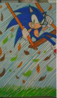 Sonic Autumn Picture by Sky-The-Echidna
