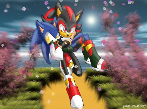 SONADOW - After the Dawn by SonicRemix