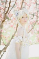Sailor Moon - Princess Serenity by vani