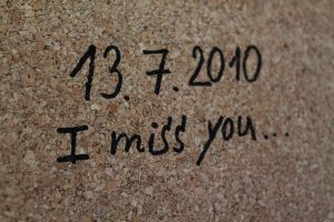 rest in peace..my darling.. by Destinytte