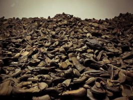 Boots of Auschwitz's detainees by Ajumska