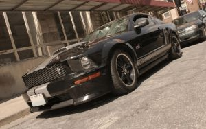 Shelby GT Front Qtr by joerayphoto