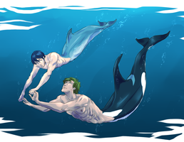 Dolphin and Orca by SplitSoulSister