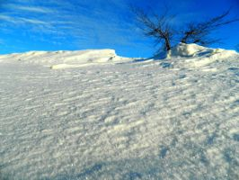 Snowbank by Callie6446