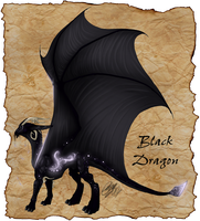 Black Dragon by Dragara