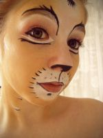 cat make up by Ayakuchan