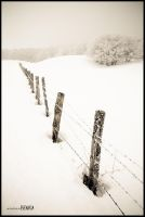 Snowy countryside by benisa