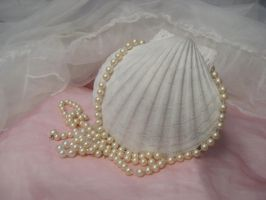 Lt. Cream Pearls w Shell by SerendipityStock