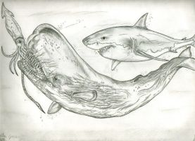 A Killer Sperm Whale by Art-26