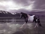 Horse of Rock by paintedchaos