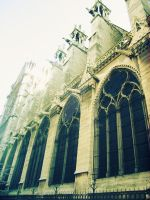 Walls of Notre Dame by Rosemix2