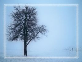 loneliness... by sinparadox