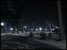 first snow in night 3 by danamis