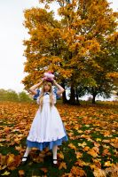 Alice in Wonderland by kaworu0926