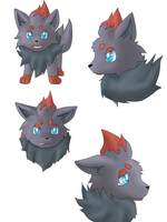 Zorua doodles xD by Kuro-No-Yuki