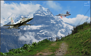 Swiss F-5E by Lindale-FF