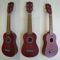 Ukulele Stock by chamberstock