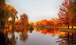 Autumn in Boston III by MyLifeThroughTheLens