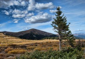 Fall Timberline by TheDeckBrew
