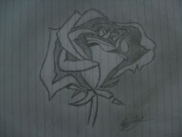 Rose drawing by Bee10731