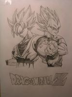 Dragon Ball Z - Goku And Vegeta by Master-Tomoya